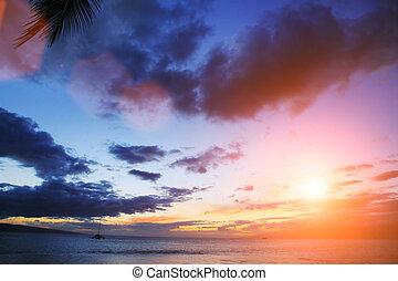 上に, 日没, 海洋