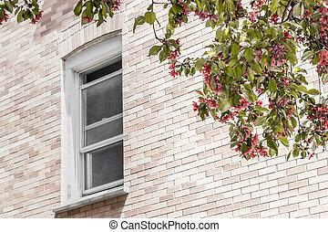 上に, 木, 窓の眺め, 咲く