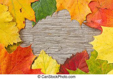 上に, 葉, 背景, 木製である, 秋