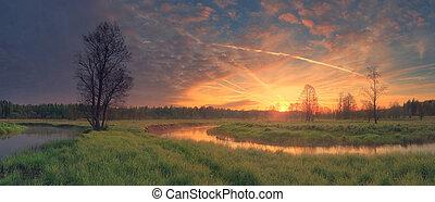 上昇の 太陽, 上に, 緑の採草地