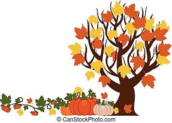 不同, 大小, 樹, 插圖, 離開, 背景。, 矢量, 南瓜, 秋天, 橙, 白色
