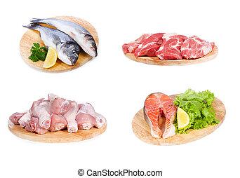 不同, fish, 肉, 未加工, 集合, 小雞