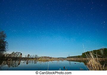不滿星星的, 在上方, 天空, 湖