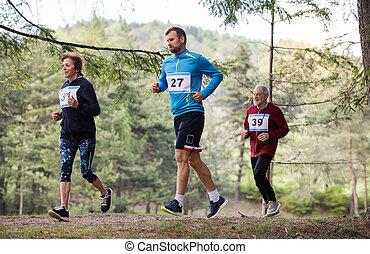 世代, グループ, 人々, 競争, 動くこと, nature., multi, レース