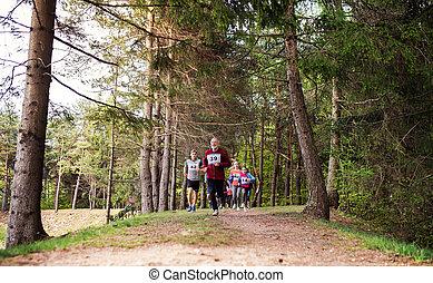 世代, グループ, 人々, 競争, 大きい, 動くこと, nature., multi, レース