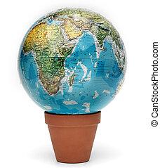世界, grows