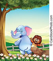 丘の上, ライオン, 木, 象