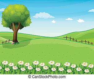 丘の上, 巨人, 木, 庭