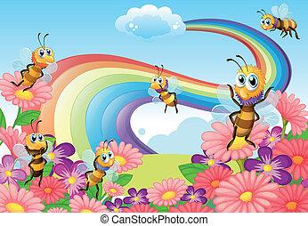 丘の上, 花, 蜂, 庭, 咲く