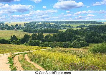 丘陵性, 夏, 風景, ∥で∥, 田舎の道路