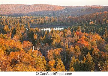 丘, 北, 色, ミネソタ, 木, 湖, 秋, 小さい