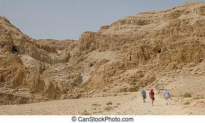 丘, qumran, 死んだ, 発見された, 海, どこ(で・に)か, スクロールする