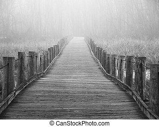 丟失, 在, the, 霧