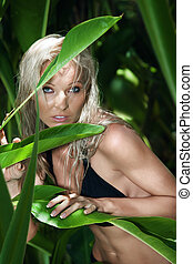 中に, ジャングル