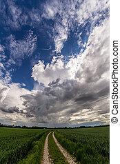 中に, ∥, 空, a, 美しい, 雰囲気, の, 雲