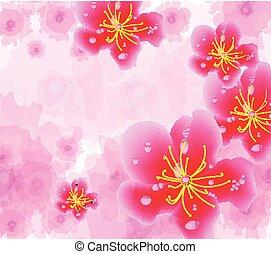 中国の新年, 背景, 咲く, sakura, ブランチ