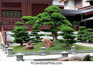 中国語, 庭, 伝統的である