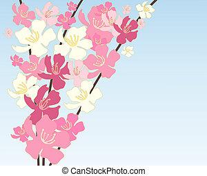 中国語, 花
