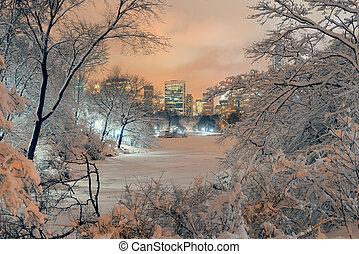 中央公園, 冬天