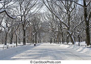 中央, 購物中心, 公園, 多雪