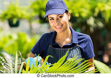 中, 温室, 庭師, 仕事, 女性