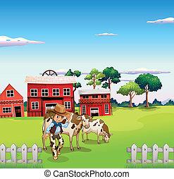 中, 牛, フェンス, カウボーイ
