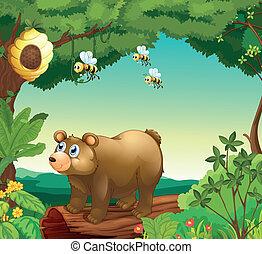 中, 蜂, 3, 熊, 森林