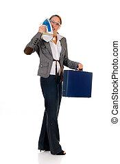主婦, 女性実業家