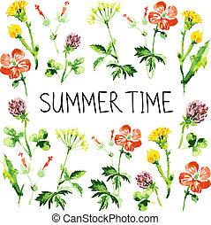 主題, レトロ, card., 背景, 夏, 花, 挨拶, 水彩画, wildflowers., 型