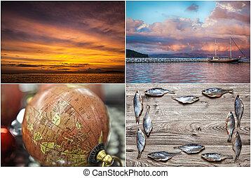 主題, collage., sea.fishing