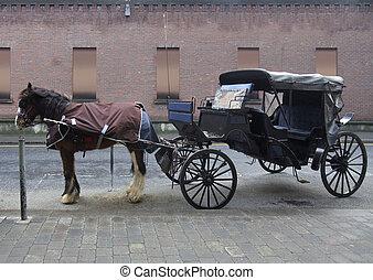 乗り物, ダブリン, 馬に引かれている