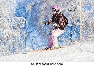 乗馬, スキーをする