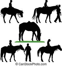 乗馬, 馬, 学校