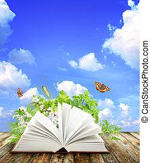 书, 性质