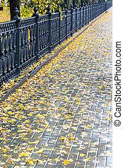 乾いていない舗装道路, ∥で∥, 黄色は 去る, 後で, 秋, 雨
