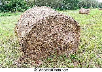 乾きなさい, うそ, 干し草, 回転した, haystacks, の上, 近くに, 大きい, うそ, 他, 緑の森林, 背景, 時間, haystack, 草, 回転しなさい, 収穫する