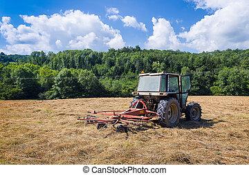 乾きなさい, ロータリー, 駐車される, 牧草地, 熊手, トラクター