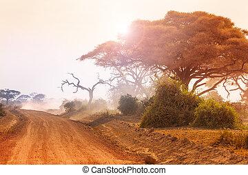 乾きなさい, 土, 日没, 風景, アフリカ, 道