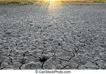 乾きなさい, 壊される, 下に, 地面, 太陽