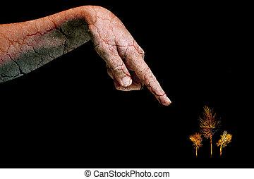 乾きなさい, 女, pointin, 手, 皮膚, 割れた