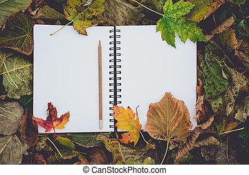 乾きなさい, 学校, 葉, 秋, 背中, 読書, 本, ノスタルジック, ブランク, 教育, 開いた, 概念