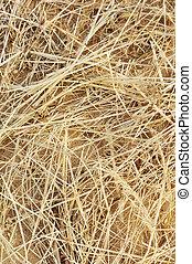 乾きなさい, 干し草, 草, 細部, 背景