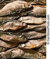 乾燥, fish