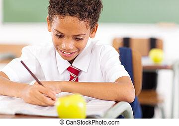 予備選挙, 男生徒, 執筆, クラス, 仕事
