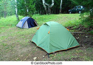 二, 帳篷, 在, 森林