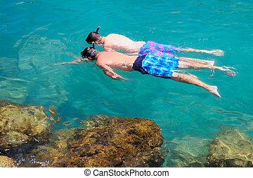 二, 旅游者, snorkeling, 在, 清楚, 海, water.