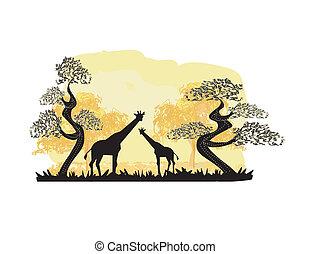 二, 長頸鹿, 黑色半面畫像, 由于, 叢林, 風景