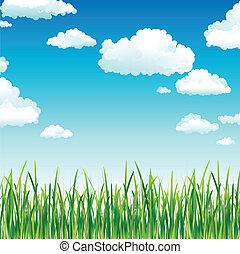 云, 在中, the, 天空, 在上面, 绿色的草