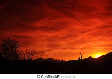 亚利桑那, 日落