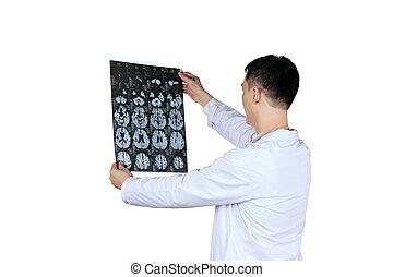 亞洲的雄性, 醫生, 看, 腦子, x光, radiographic, 圖像, ct 掃描, mri, 放射學, 部門, 被隔离, 在懷特上